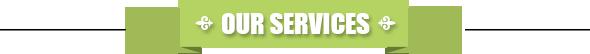 web-banner-services